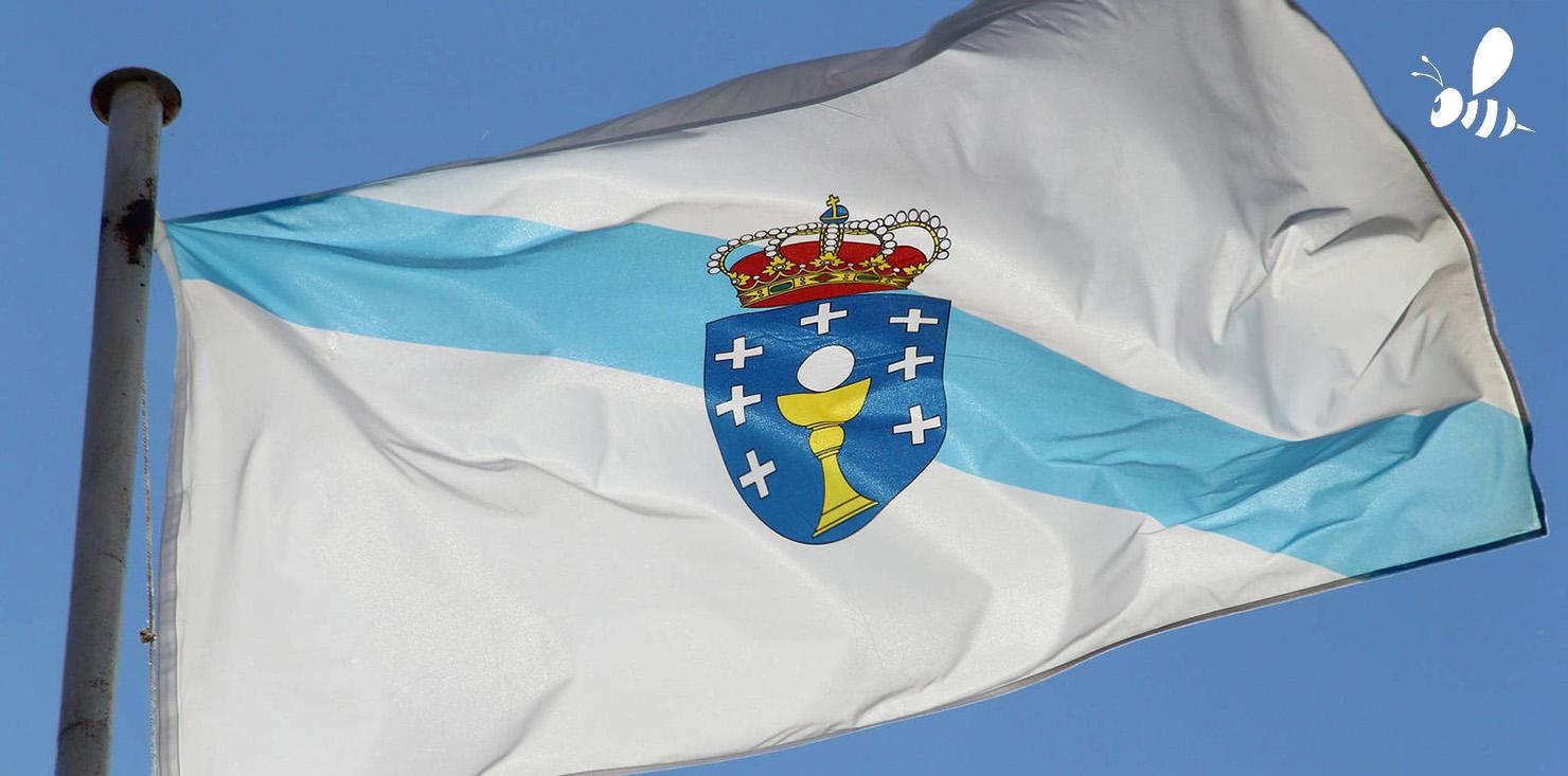 Bandera de galicia con avispa asiática