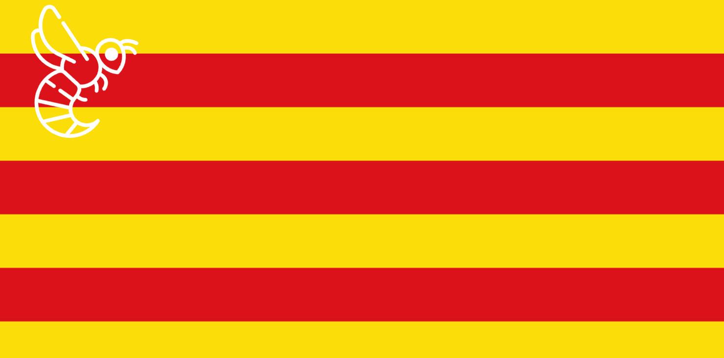 Avispa asiática en Catalunya