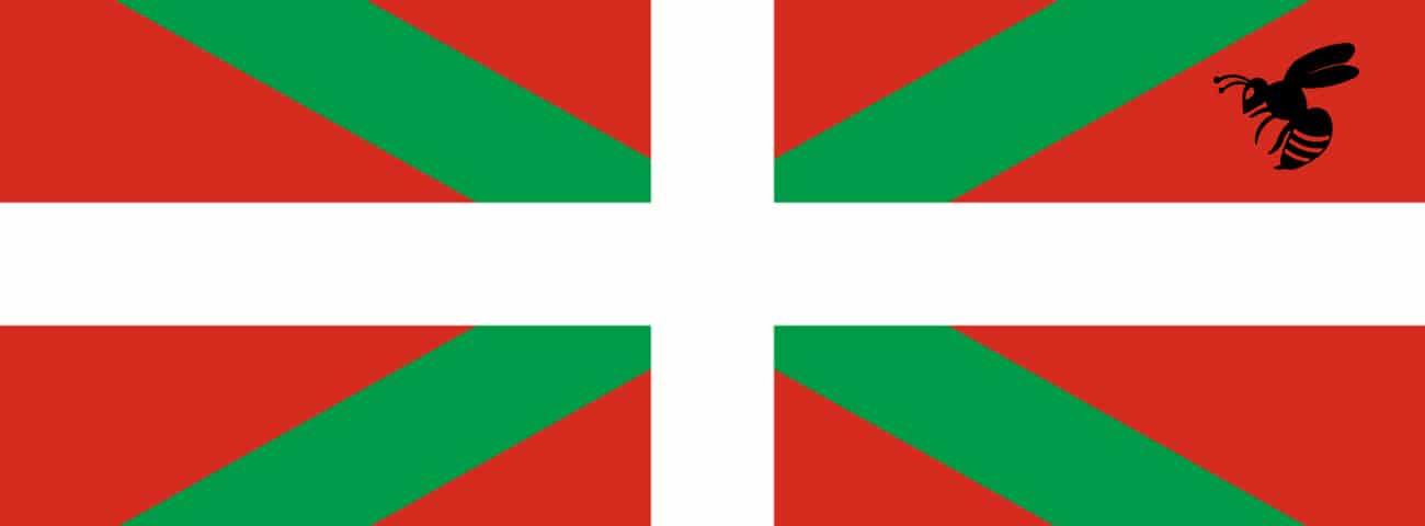 Avispa asiática Euskadi