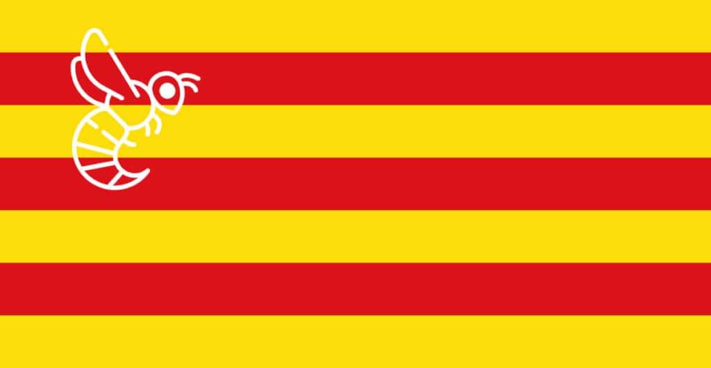 Avispa asiática Aragón