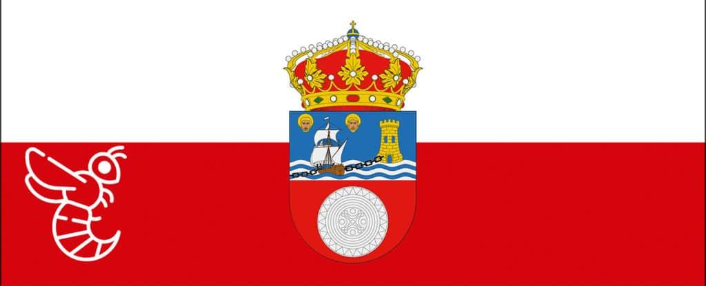 Avispa asiática Cantabria