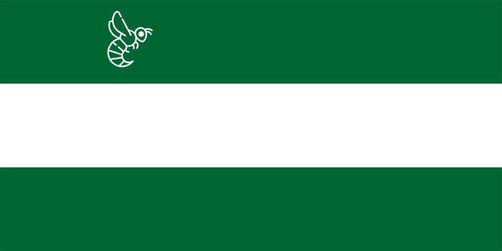Avispa asiática Andalucía